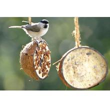 Ganzjahresvogelfutter 10 x 1/2-Kokosnüsse, 5 verschiedene Sorten-thumb-5