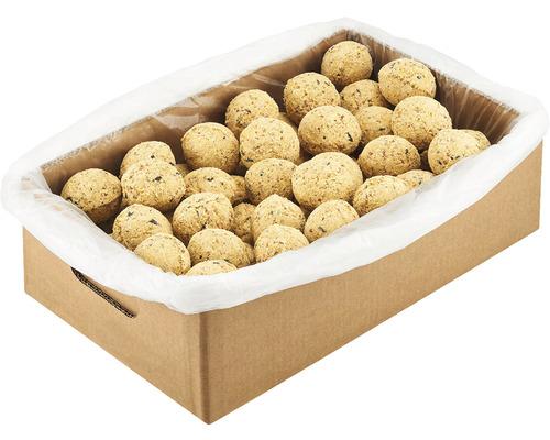 Nourriture toute saison, boules de graisse protéines 100 unités dans un filet avec 2 distributeurs