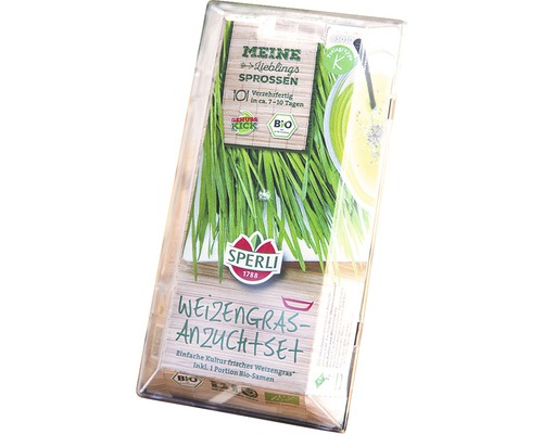 Kit de culture de pousses vertes Sperli herbe de blé