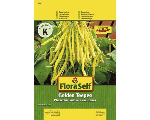 Haricots nains ''Golden Teepee'' FloraSelf semences de légumes