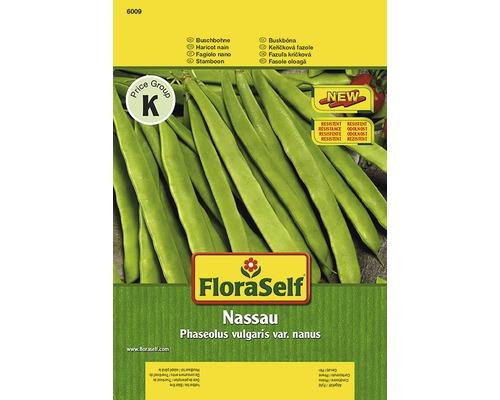 Haricots nains ''Nassau'' FloraSelf semences de légumes