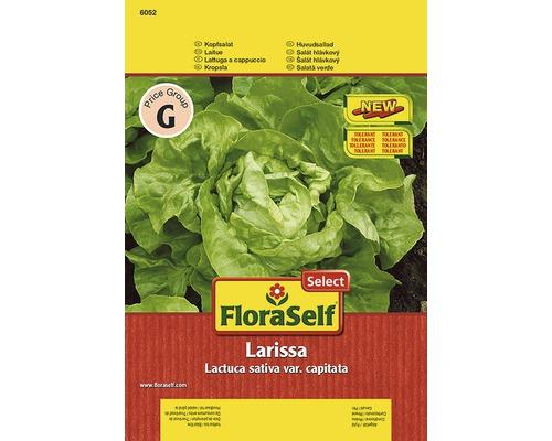 Laitue ''Larissa'' FloraSelf semences de légumes