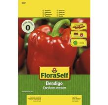 Paprika 'Bendigo' FloraSelf Gemüsesamen