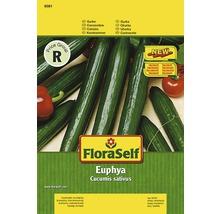 Gurke 'Euphya' FloraSelf Gemüsesamen