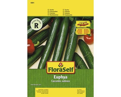 Concombre ''Euphya'' FloraSelf semences de légumes