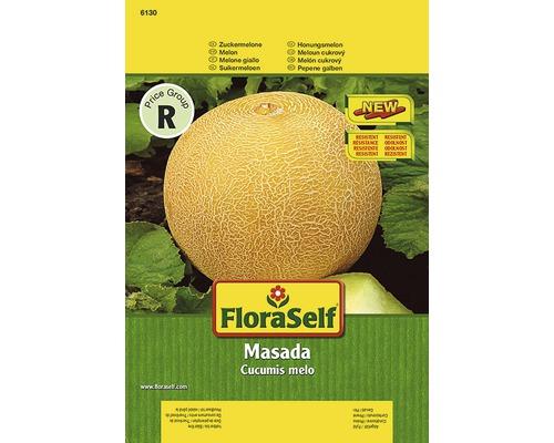 Melon ''Masada'' FloraSelf semences de légumes