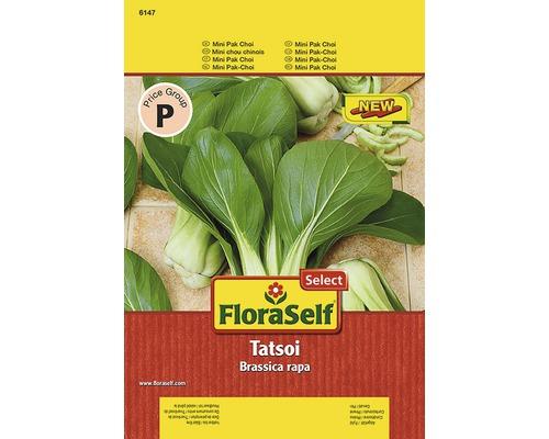 Pak Choi ''Tatsoi'' FloraSelf semences de légumes