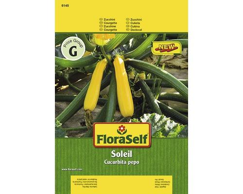 Courgette ''Soleil'' FloraSelf semences de légumes