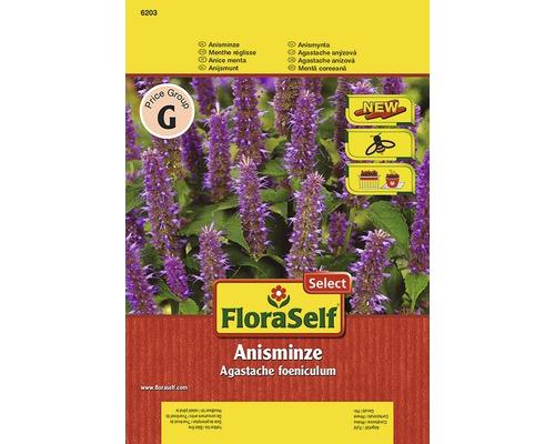 Anismint FloraSelf semences de fines herbes
