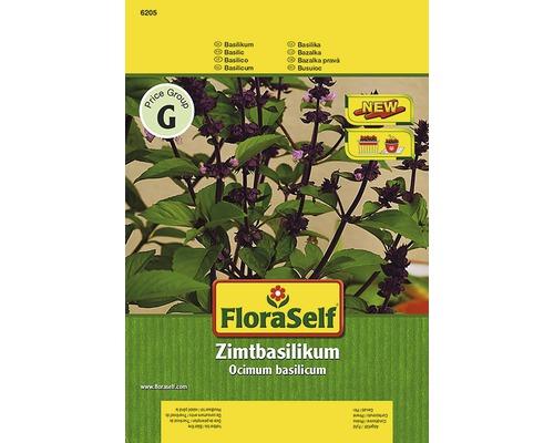 Basilic cannelle ''Cino'' FloraSelf semences de fines herbes