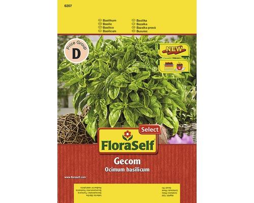 Basilic FloraSelf semences de fines herbes