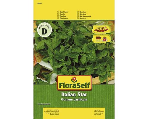 Basilic ''Italian Star'' FloraSelf semences de fines herbes