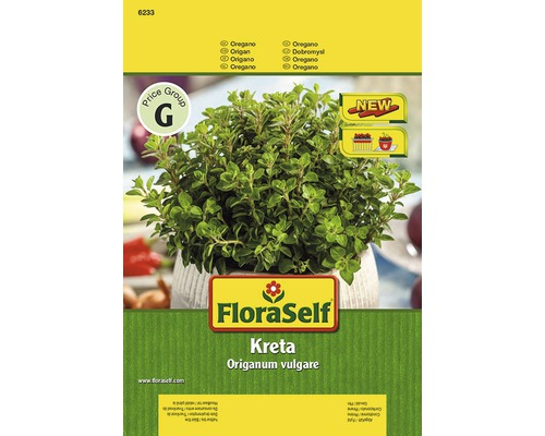 Origan ''Kreta'' FloraSelf semences de fines herbes