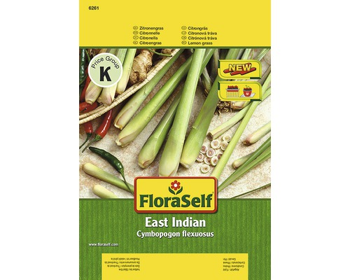 Zitronengras ''East Indian'' FloraSelf semences de fines herbes