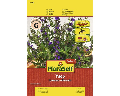 Ysop FloraSelf semences de fines herbes