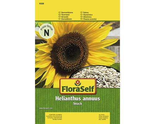 Tournesol ''Snack'' FloraSelf semences de fleurs