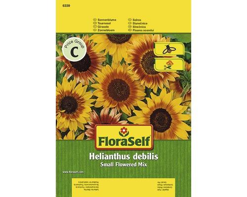 Tournesol FloraSelf semences de fleurs