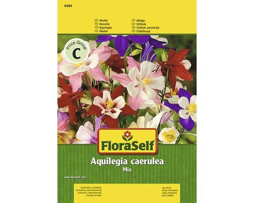 Aquilegia FloraSelf semences de fleurs