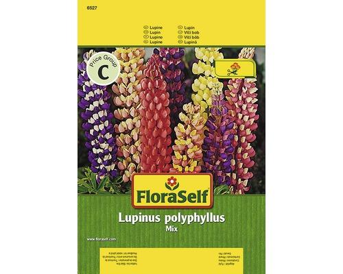 Lupinus FloraSelf semences de fleurs
