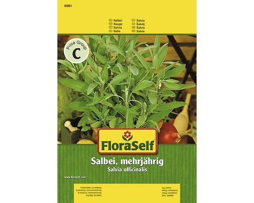 Sauge FloraSelf semences de fines herbes