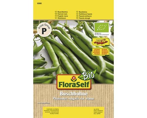 Bio-Haricots nains ''Domino'' FloraSelf semences de légumes