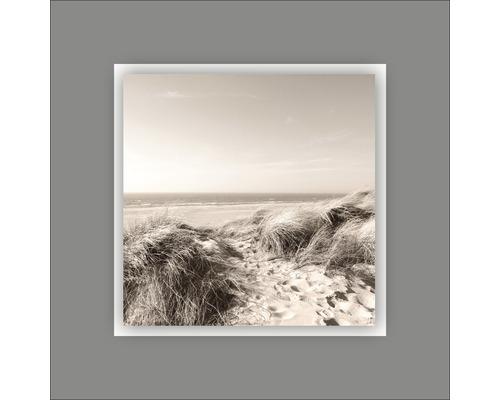 Tableau en métal Beach VI 50x50 cm