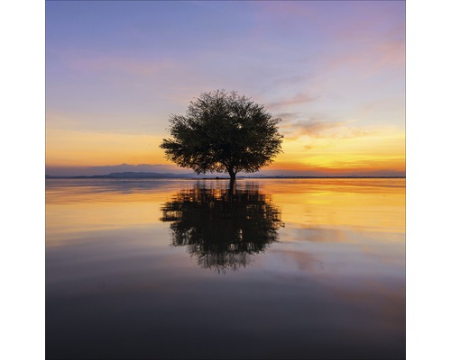 Tableau en verre Lonely Tree 20x20 cm
