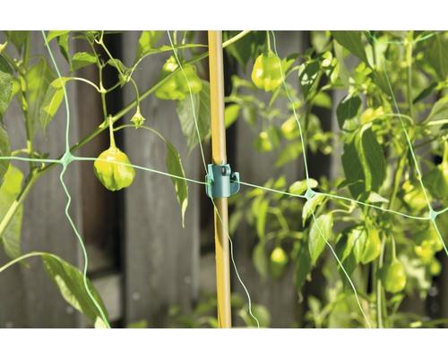 Clip pour plantes FloraSelf plastique multi 9 pièces