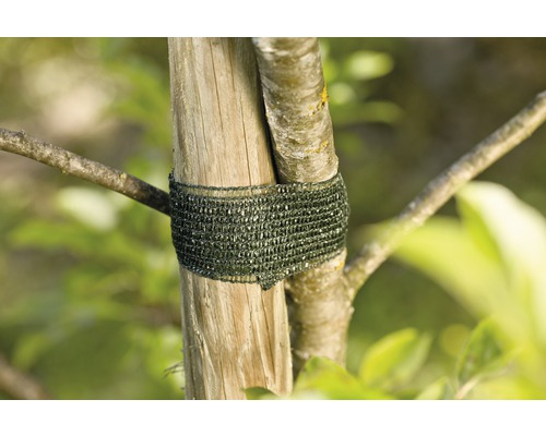 Système pour attacher les arbres FloraSelf métal et plastique 50m
