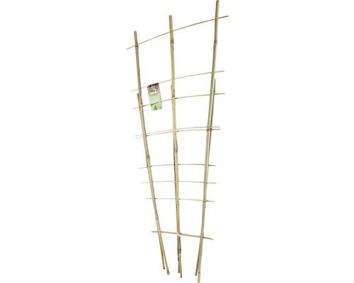 Ensemble d''arceaux de bambou FloraSelf H60 + 85cm 2 pièces