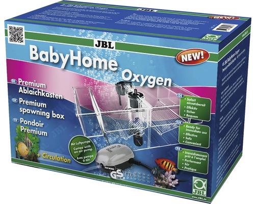Bac de quarantaine JBL BabyHome Oxygen avec pompe à air, tuyau à air, diffuseur à air