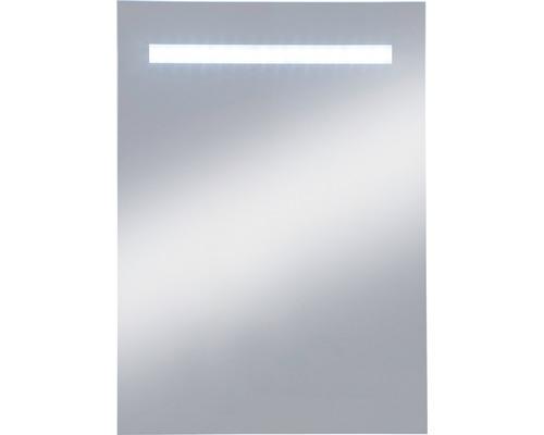 Badspiegel E-Light Two 40x60 cm mit Beleuchtung IP 20