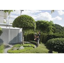 Benzin-Gartenpflegeset 4 in 1 IKRA, IBKH 33, 2 Takt-thumb-8