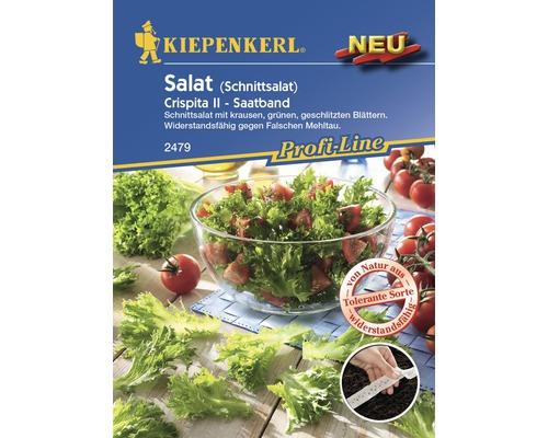 Graines de salade «Crispita II» Kiepenkerl en bande de semis