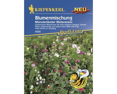 Mélange de fleurs Kiepenkerl «Münsterländer Blütenmeer»