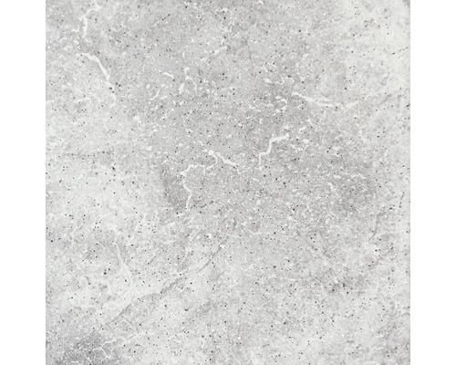 Carrelage de sol en grès cérame Capra gris clair 24,5x24,5 cm