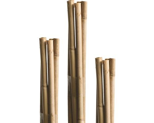 Tige en bambou FloraSelf H120cm Ø8mm marron 10 pièces