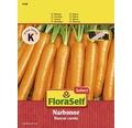 Möhre 'Narbonne' FloraSelf Gemüsesamen