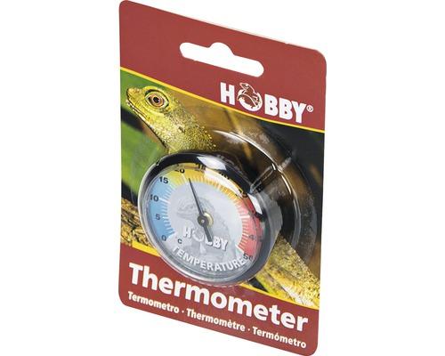 Thermomètre pour terrarium