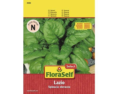 Epinard Lazio semences de légumes FloraSelf®