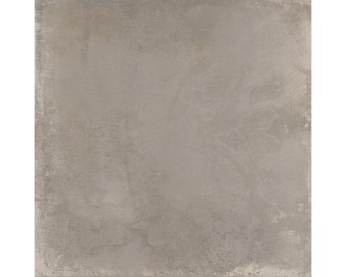 Carrelage pour sol en grès cérame fin WOHNIDEE Saragossa Taupe 60x60cm