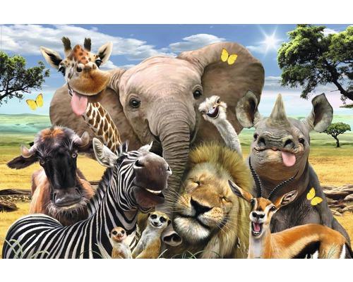 Poster Wildlife Funnies 61x91,5 cm