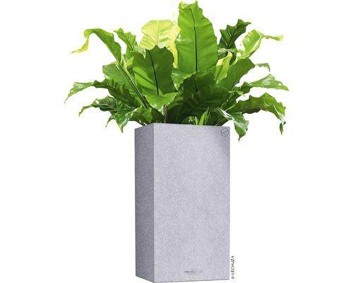 Vase Lechuza Canto Color plastique30x30x56cm gris avec système d'arrosage en terre