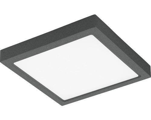 Applique murale extérieure LED 1x22W 2.600lm 3.000K blanc chaud 300x300mm Argolis anthracite/blanc