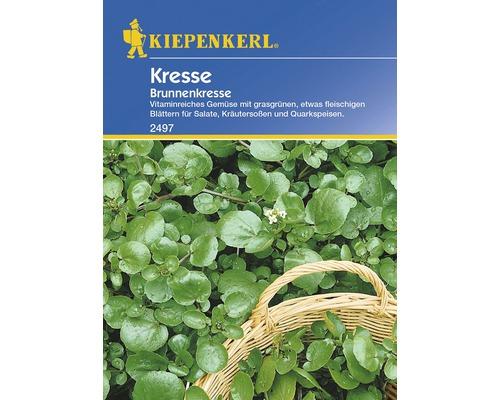 Graines de cresson d'eau Kiepenkerl