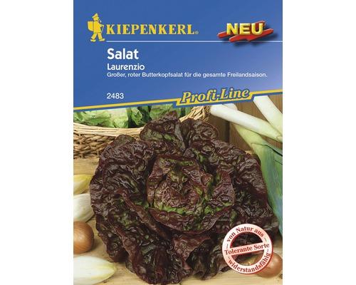 Graines de salade «Laurenzio» Kiepenkerl