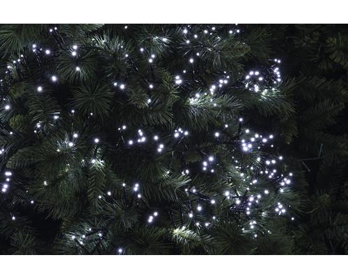 Guirlande lumineuse buissons LED Lafiora extérieur et intérieur 240 ampoules blanc froid