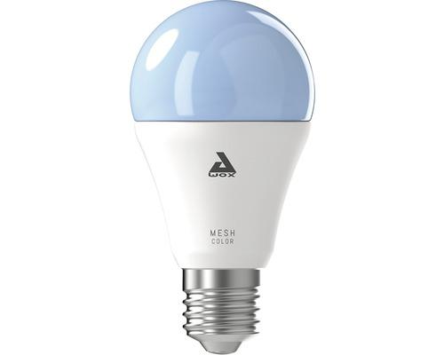 Ampoule LED A60 RGBW CCT à intensité lumineuse variable E27/9W 806 lm 2750 K blanc chaud