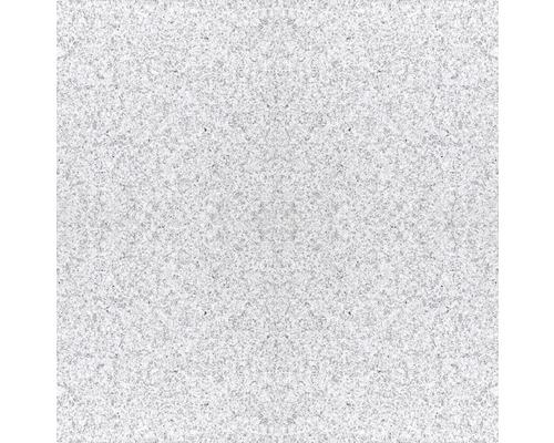 Carrelage de sol en granit 303 gris 30,5x30,5cm