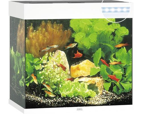 Aquarium JUWEL Lido 120 avec éclairage à LED, pompe, filtre, chauffage sans meuble bas blanc